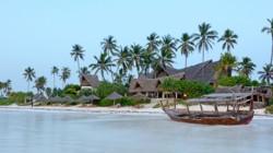November Zanzibar special blurb Azanzi