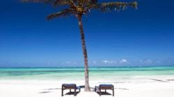 November Zanzibar special blurb Karafuu