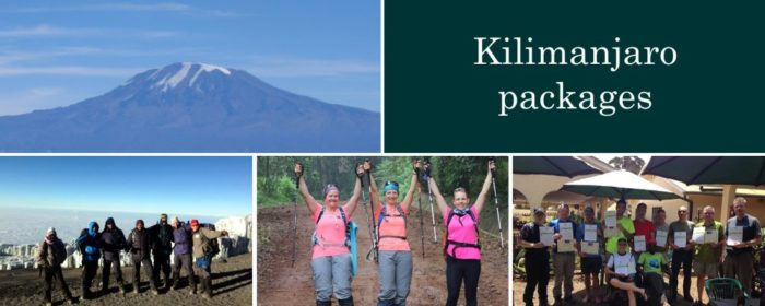Kilimanjaro packages from South Africa