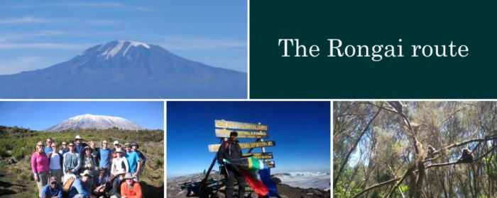 Rongai route Kilimanjaro